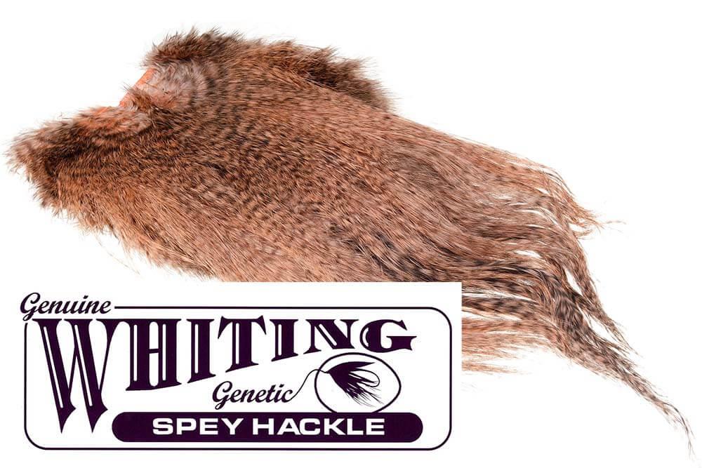 Whiting Birdfur